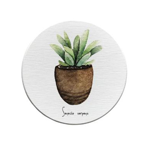 Retro Drink Coasters_Agave